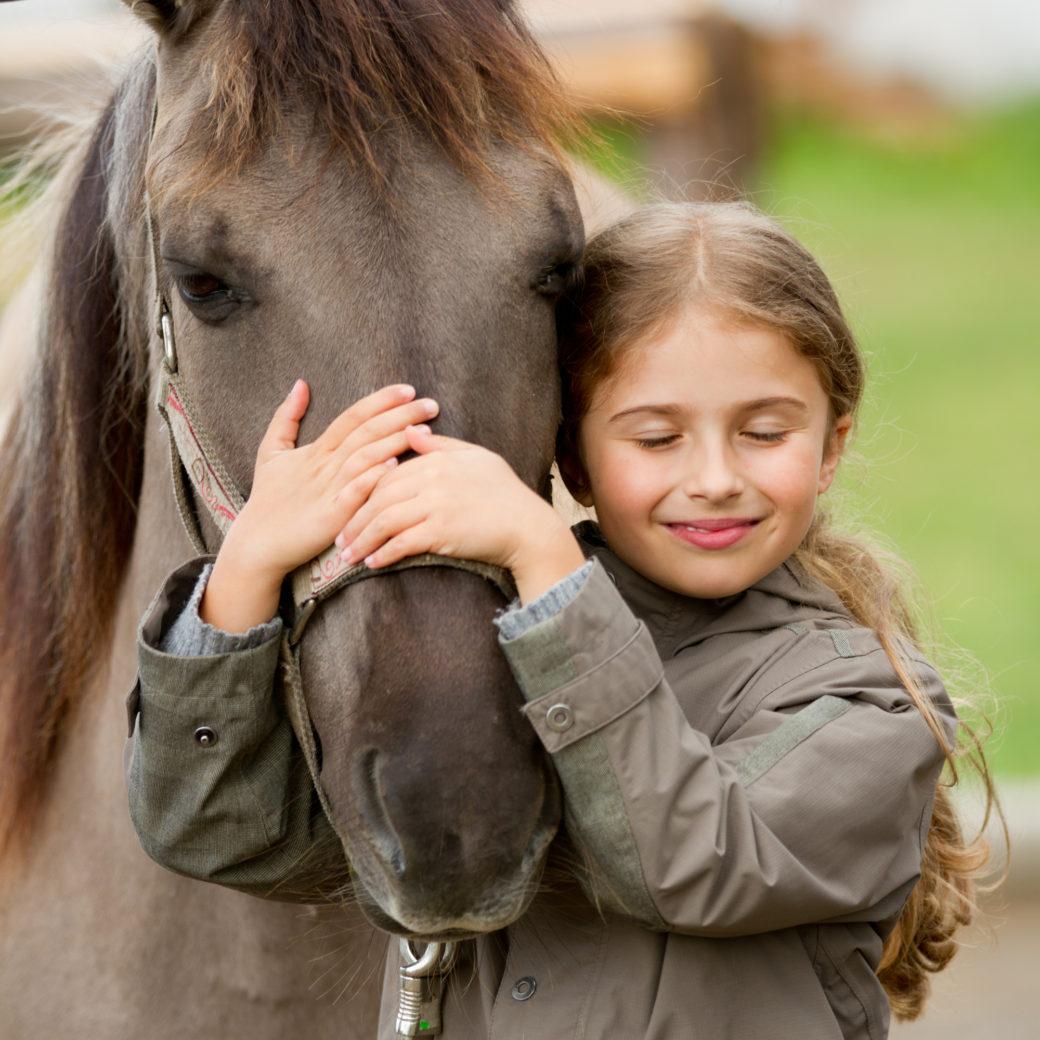Hest Ridetilbehør